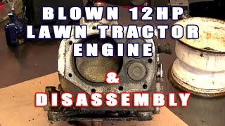 Blown Up Briggs & Stratton Lawn Tractor Engine & Disassembly