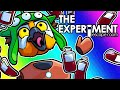 The Experiment: Escape Room Funny Moments - Finding Bodies and BLUBBAGS!