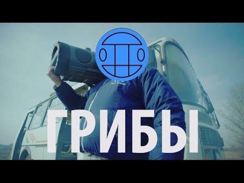 Грибы - Тает Лёд