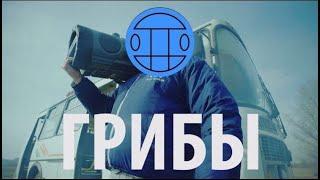Клип Грибы - Тает лёд