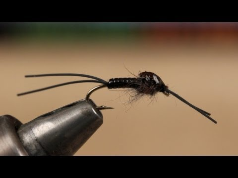 Little Black Stonefly Nymph