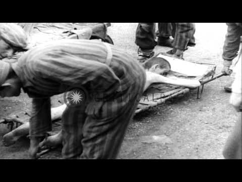 Dead bodies of Nazi concentration camps victims placed into crematory after liber...HD Stock Footage