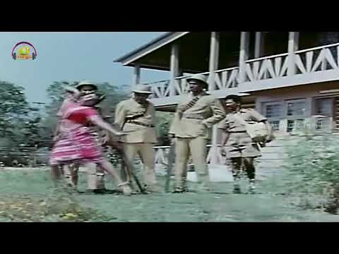 Annai Oru Aalayam Tamil Movie Songs | Malayoram Video Song | Rajinikanth | Sripriya | Ilayaraja