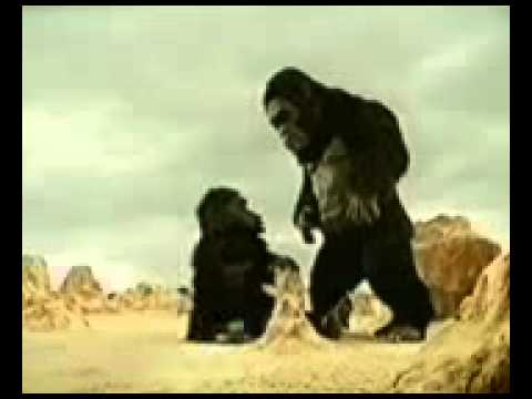 Kingkong Tamilanda Com video