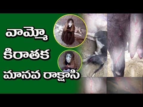 Alien attacks on animals in Karnataka | Mysterious of Aliens | Viral Video | #mp media