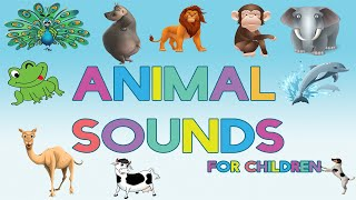 Animal Sounds for Children (30 Amazing Real Animals) | Names, Sounds, funny Images and videos.