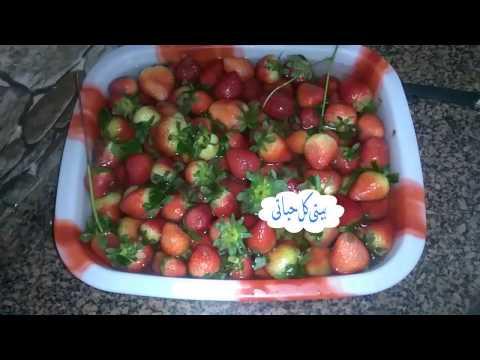 رمضان قرب  افضل طريقة لتفريز الفراولة بتفك فى 5 دقائق#بيتى_كل_حياتى