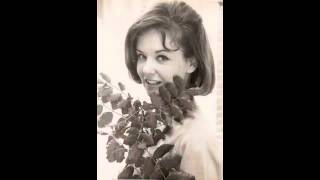 Watch Shelley Fabares Picnic video