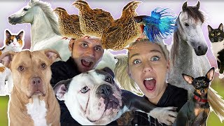 MOVING ALL MY PETS TO OUR NEW HOUSE! WE BOUGHT A HOUSE! | NICOLE SKYES