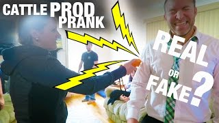 CATTLE PROD PRANK REAL OR FAKE?