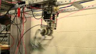 Half-Size Robotic Leg: 1.2x Nominal Walking Speed