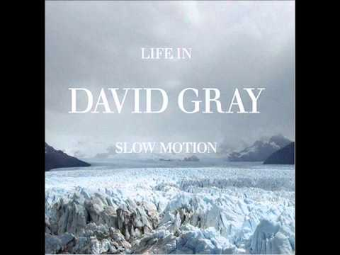 Gray, David - From Here I Can Almost See The Sea