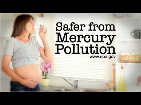 Victory on Mercury Pollution:  Dream Big!