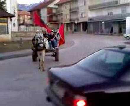 Dibra feston pavarsine e kosoves 1