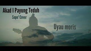 Download Lagu Akad Payung Teduh Cover  versi alat musik traditional Dayak Kalimantan / Borneo Gratis STAFABAND