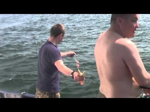 речная рыбалка в португалии