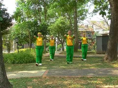 Senam Sehat Anak Indonesia ( Ssai ) video