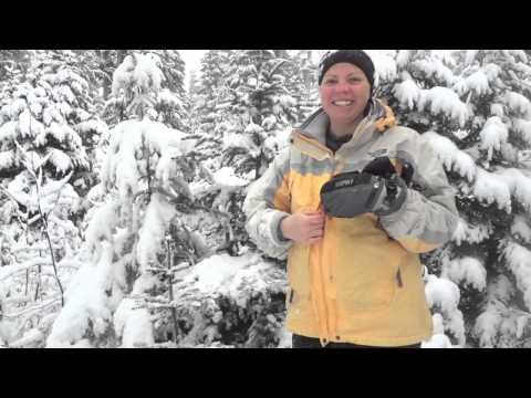 Jensen Family Tree Search 2012