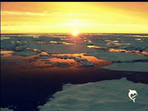 Michy Reincke - Nächte übers Eis