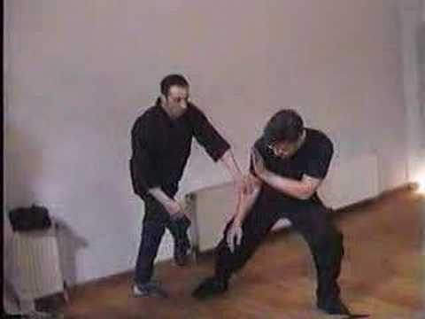 Tommy Carruthers Jeet Kune Do Image 1