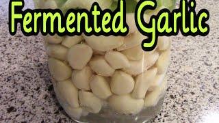 Fermented Garlic - Preserving Garlic with Fermentation