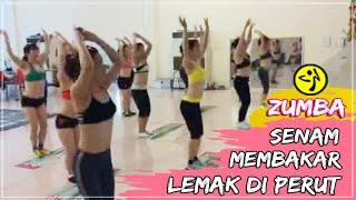 download lagu Senam Aerobic Membakar Lemak Bawah Perut Dan Pinggang gratis