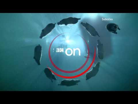 *HD* BBC One - Hippos ident - (Tardis) - 2014