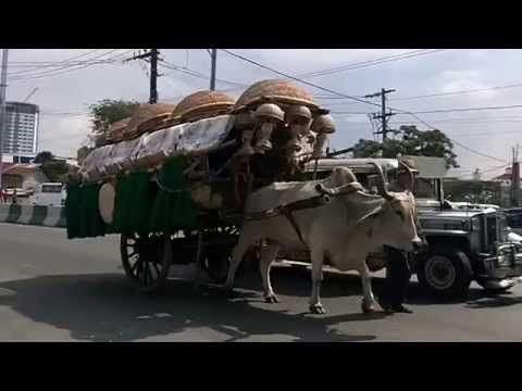 Ox-Carts and Jeepneys on a street in Manila, capital city of the Philippines