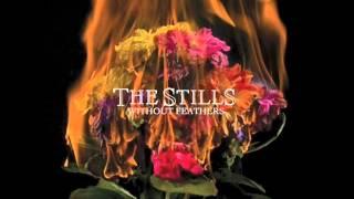 Watch Stills In The Beginning video