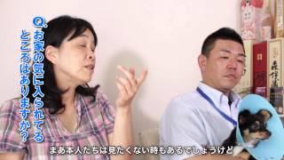 インタビュー動画 Vol.05