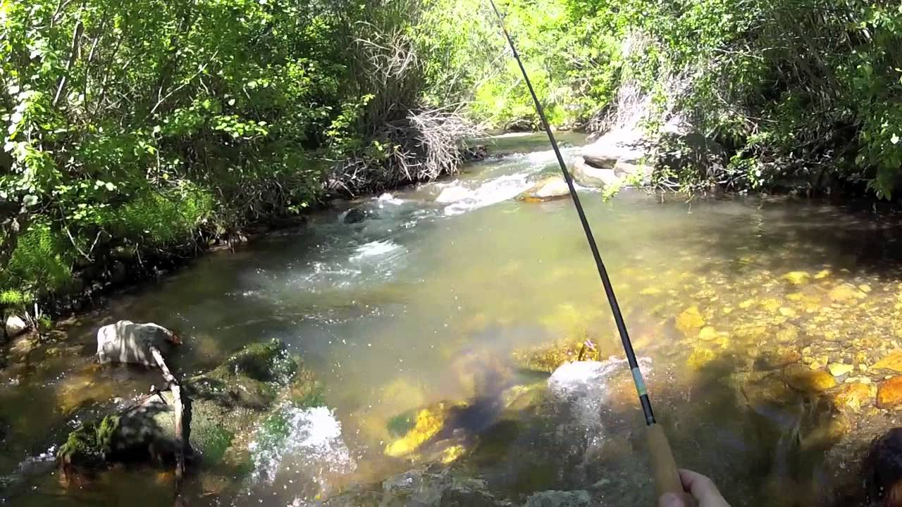 Tenkara 6 14 2012 southeast idaho youtube for Southeast idaho fishing report