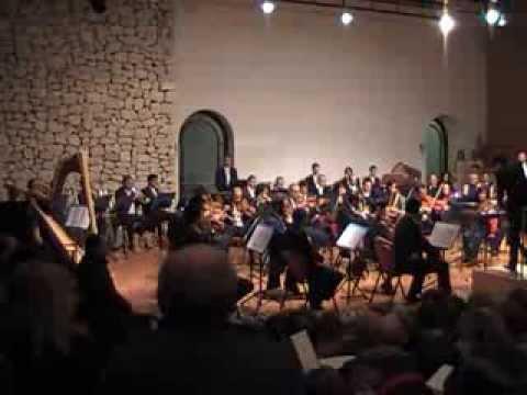 Tiziano Palladino contrabbassista e mandolino solista in orchestra molisana