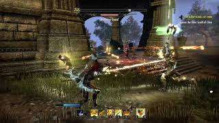 Elder Scrolls Online. Look at all those chickens