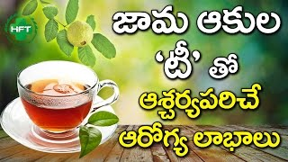 Do You Know That Guava Leaf Is Medicine? | Health Benefits Of Guava And Guava Leaves | Health Facts