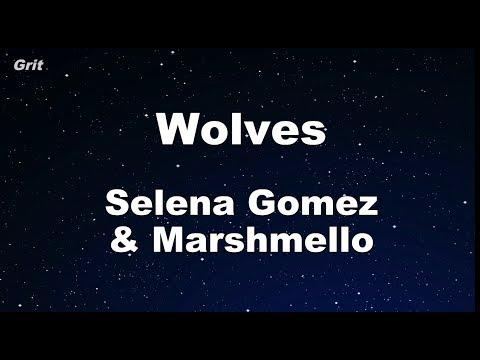 Wolves  - Selena Gomez, Marshmello Karaoke 【With Guide Melody】 Instrumental