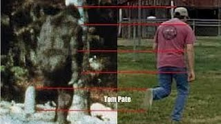 National Geographic Animals 2014 Bigfoot The Definitive Guide Full Documentary HD - YouTube