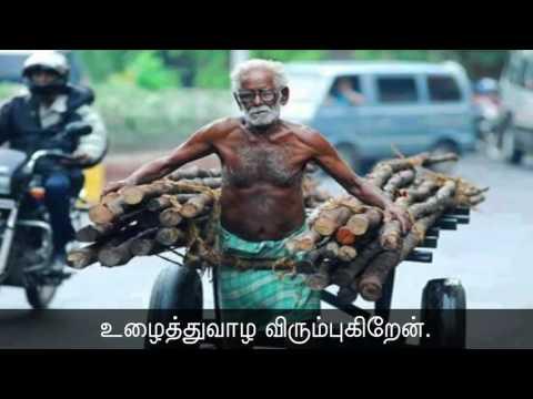 28-10-2016 தினம் ஒரு செய்தி - 145 | Seeman's Daily Quotes | Famous Quotes