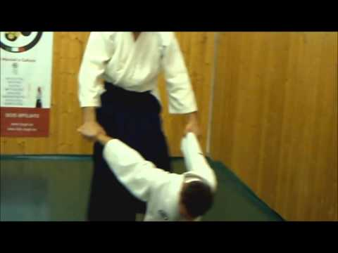 Ogawa Ryu - Aikijujutsu January Italy - Training moments II Image 1