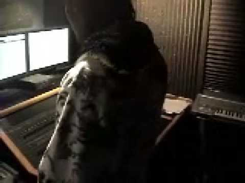 Tchuko Boyz Kanaval 2009 In The Studio Jere M