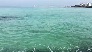 제주바다/ 제주도 협재 에메랄드 바다, 비앙도 Travel Jeju (여행블로거 채디디)