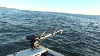 20160720 King Salmon Fishing on Possession Bar
