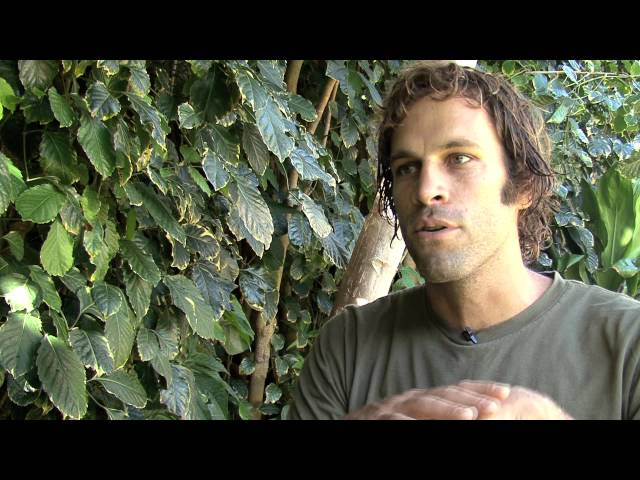 Surfing For Change: Jack Johnson (Extended Interview)