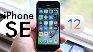 iOS 12 OFFICIAL On iPHONE SE! (Should You Update?) (Review)