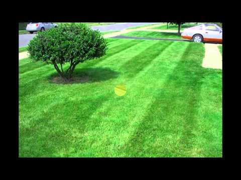 Best Lawn Service Company in Green Ohio 44720 | Alpine Landscaping