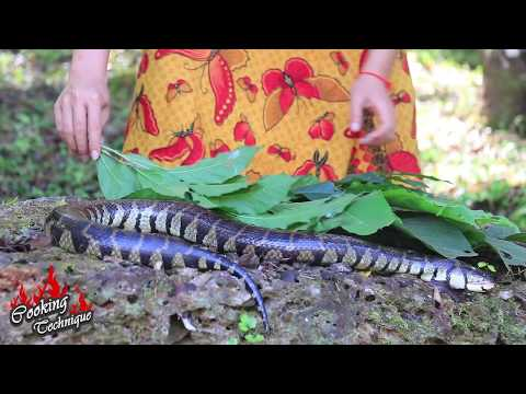 Cooking Big Egg Snake Soup Recipe For Dinner In Forest