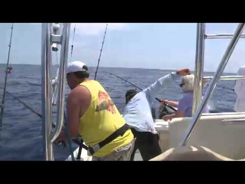 Reel Sharp Mahi Mahi Fishing MP4