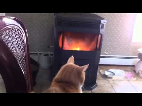 Pellet Stove 3 of 4