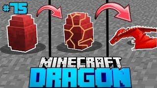 MEIN DRACHE SCHLÜPFT?! - Minecraft Dragon #75 [Deutsch/HD]