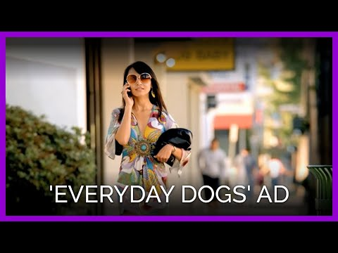 PETA s  Everyday Dogs  Ad