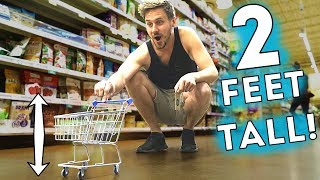 WE WENT SHOPPING WITH A TINY CART!